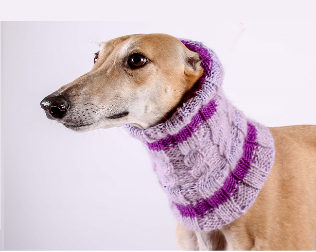 Snood for a Hound - Barking Bitches Barking Bitches