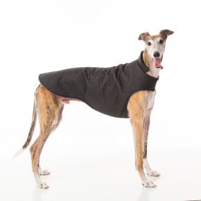 Barking Bitches Greyhound Coat 2.png