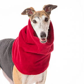 Barking Bitches Greyhound Coat with Snood.png