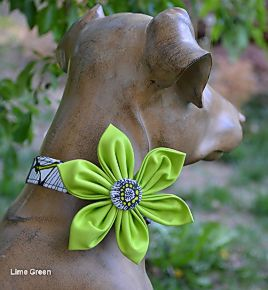 Barking Bitches Lime green Flower Collar.jpg