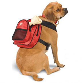 Barking Bitches Sarah Tom ClassyRuff Dog Backpack Dr Foster.png