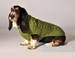 Chilly Dog Sweater cable knit.png
