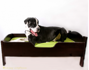Extra Large Dog Bed 5.png