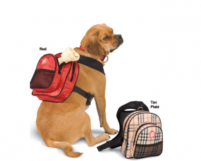 LeatherDogBackpack.png