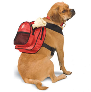 Barking Bitches Sarah Tom ClassyRuff Dog Backpack Dr Foster
