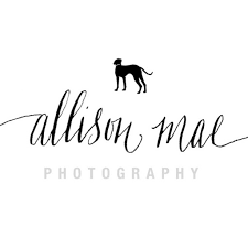 allison-mae-pet-photography 2